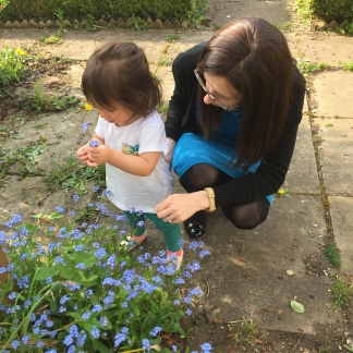 Checking out the garden after nursery!